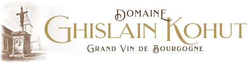 Introduction to French Wine In Burgundy From Domaine Ghislain Kohut