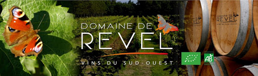 Introduction to French Wine In South West From Domaine de Revel