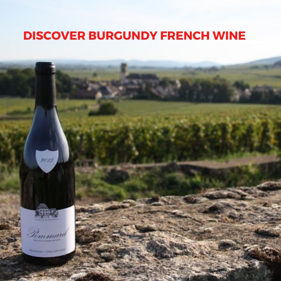 Introduction to French Wine In Bourgogne (Burgundy) From Domaine David Fagot And Domaine Vaudoisey Creusefond