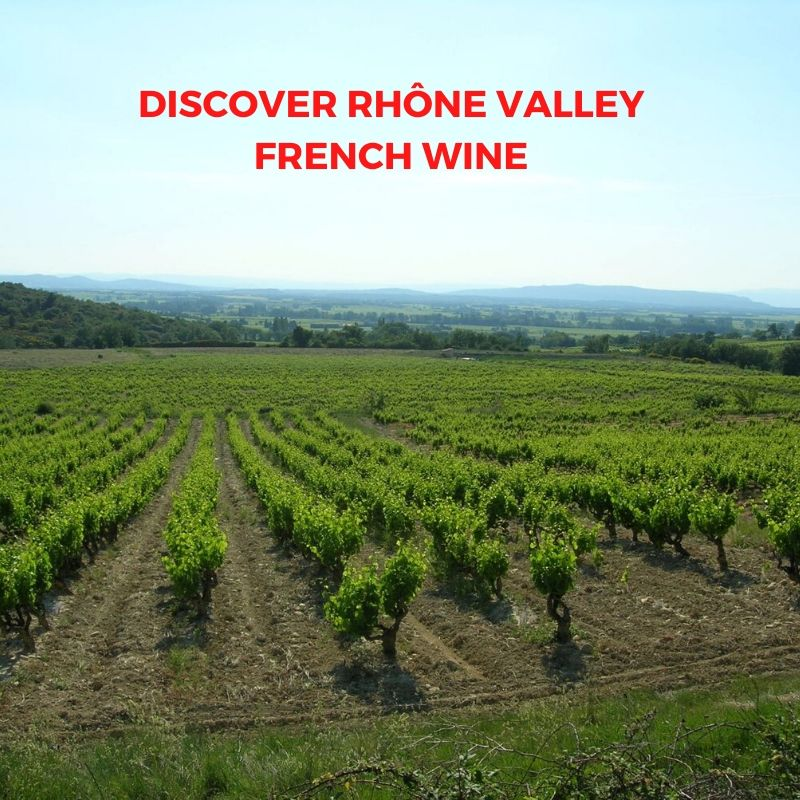 Introduction to French Wine In Rhône Valley From Domaine La Garelle, Domaine La Guintrandy And Domaine La Mereuille