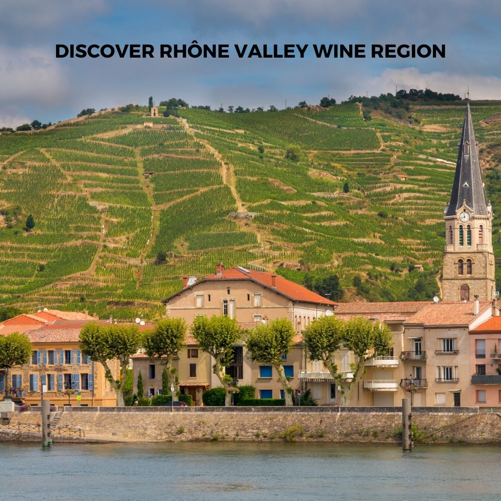 Introduction To Rhone Wine Region
