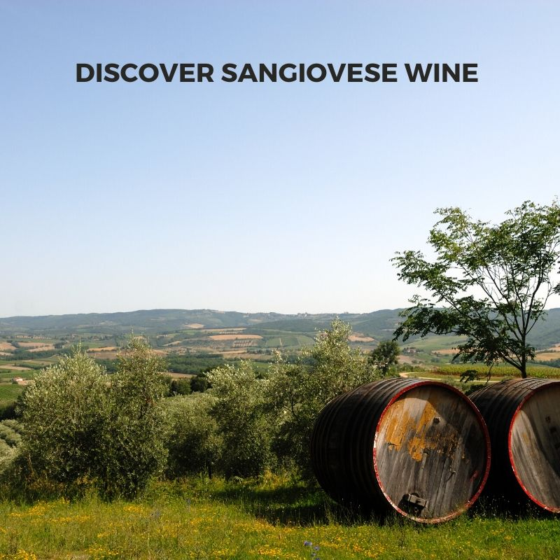 Introduction to Italian Sangiovese Wine : Chianti and Montepulciano from Tuscany