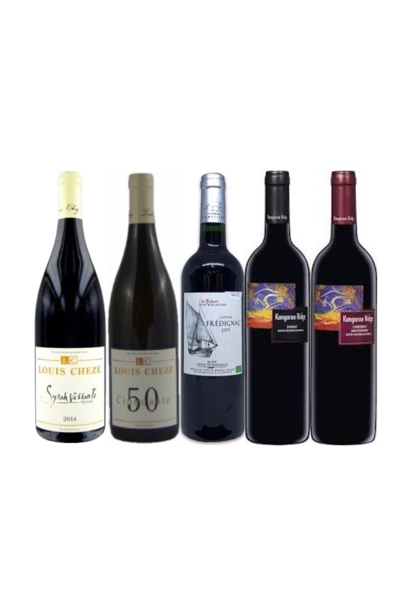 Build your hyper-personalized bundle! 6 Exclusive bottles of Red wine Plus a Chiller at only $268!!