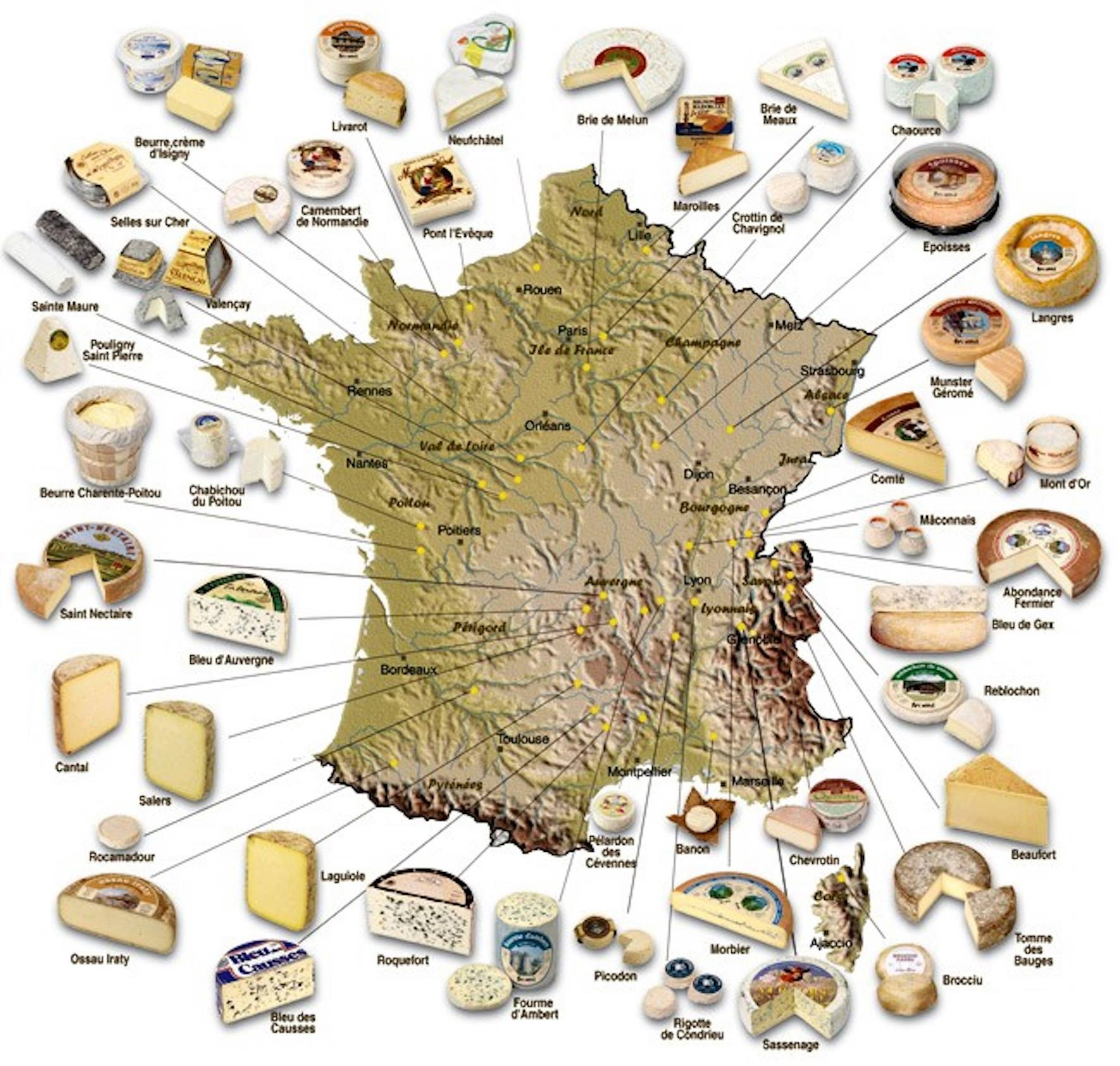 Wine Pairings: Cheese And Cheese