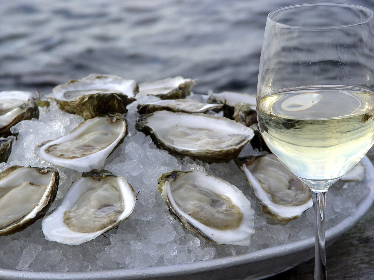 Wine Pairing: Oyster with Wine